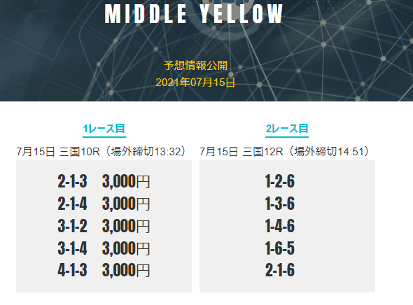 MIDDLE YELLOWプラン