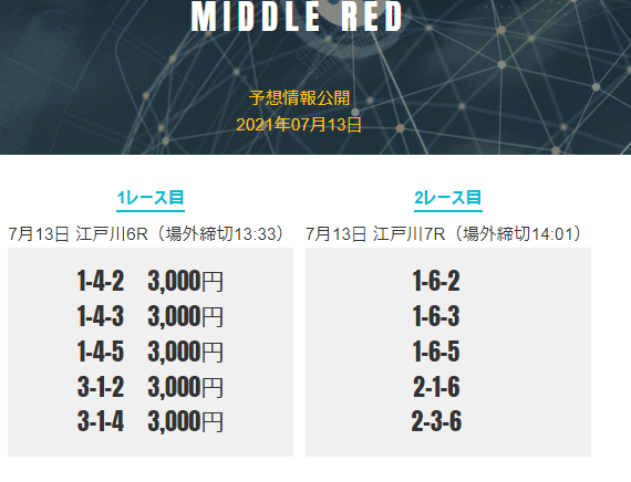 MIDDLE REDプラン